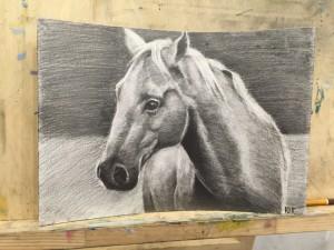 Как научится рисовать животных поэтапно