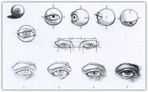 рисование карандашом для начинающих поэтапно
