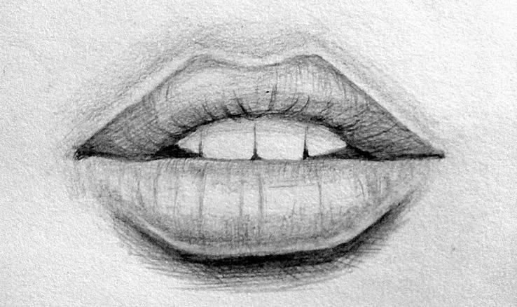 Как самостоятельно научиться рисовать карандашом